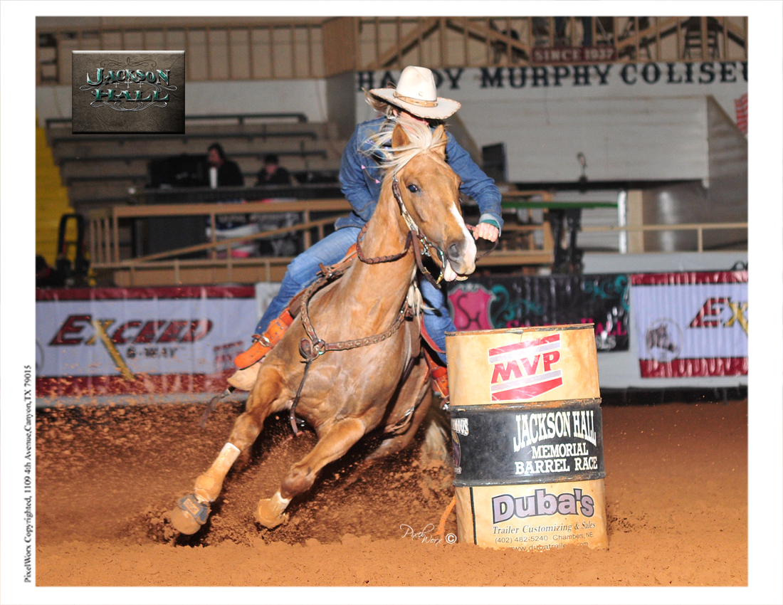 Golden Palomino Barrel Racing Horse For Sale Gainesville Tx 715