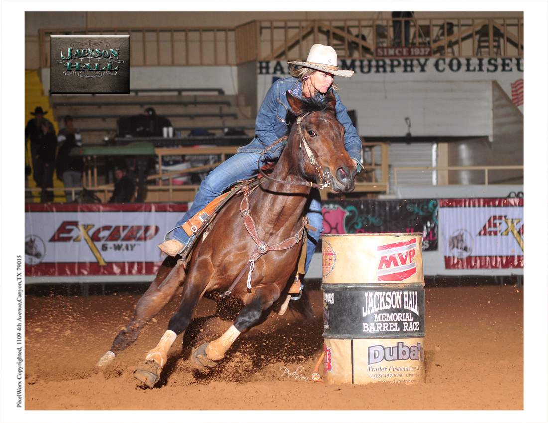 Lacys Fortune by Rares Bars Lil Doc Futurity Highlights